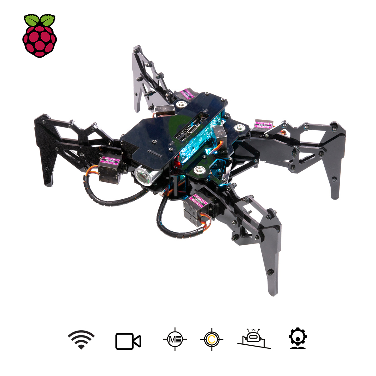 Adeept DarkPaw Bionic Quadruped Spider Robot Kit for Raspberry Pi 4/3 Model B+/B/2B, STEM Crawling Robot, OpenCV Tracking, Self-stabilizing